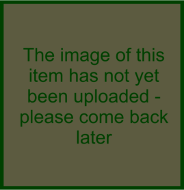 Image has not yet been uploaded - please come back later